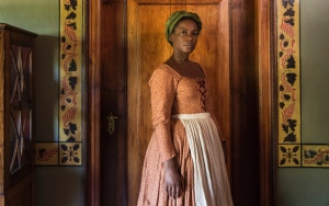 aunjanue-ellis-the-book-of-negroes